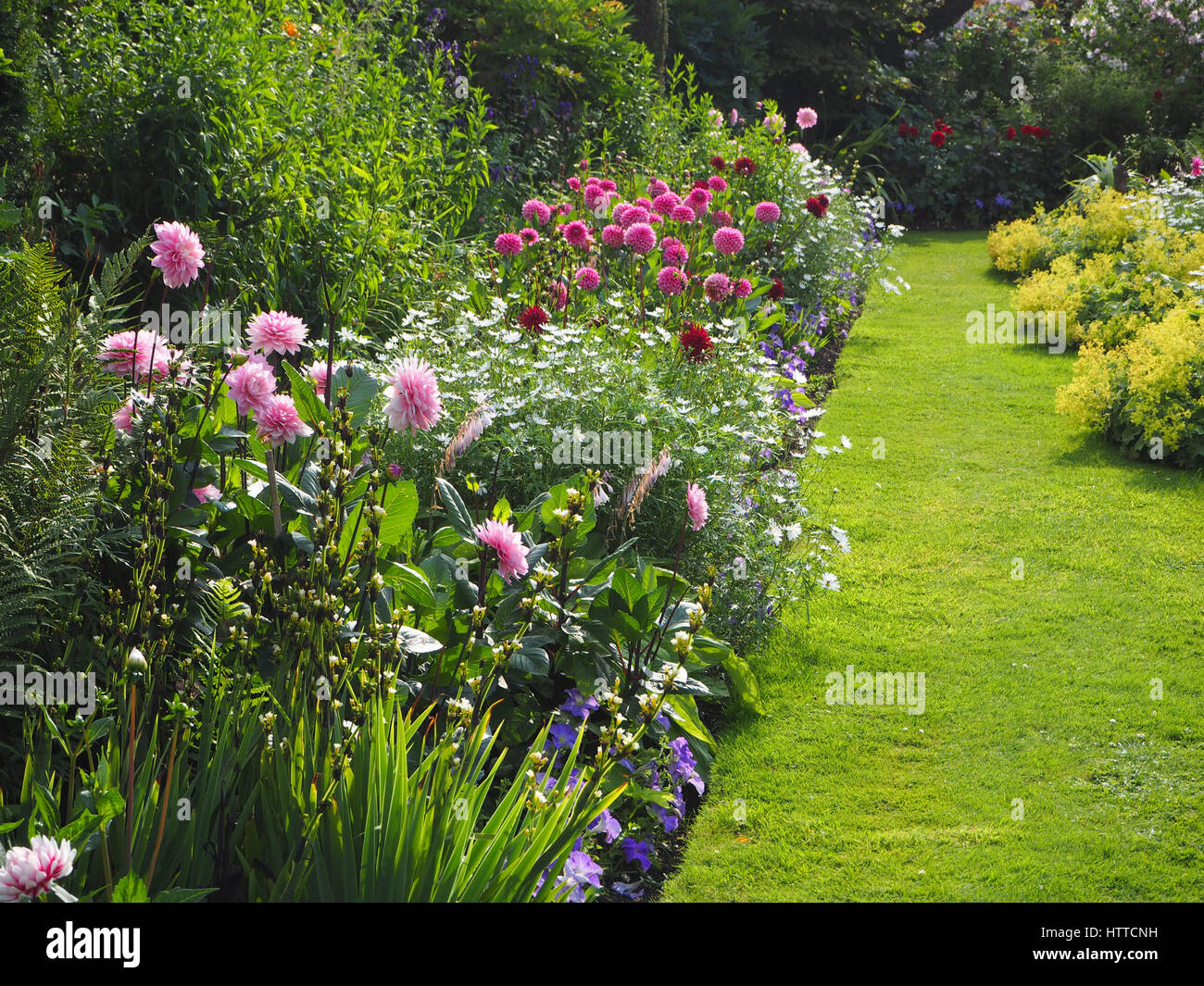 Chenies Manor Sunken garden in July. Vivid pink dahlias, ornamental pond, foliage , lawn and various shades of greenery - Stock Image