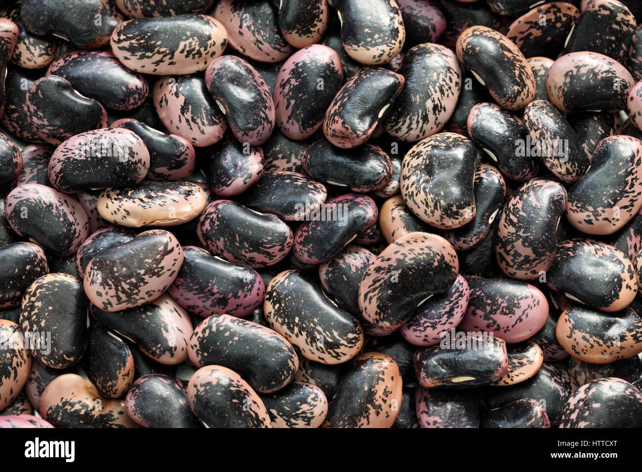 runner beans stock photos  runner beans stock images  alamy