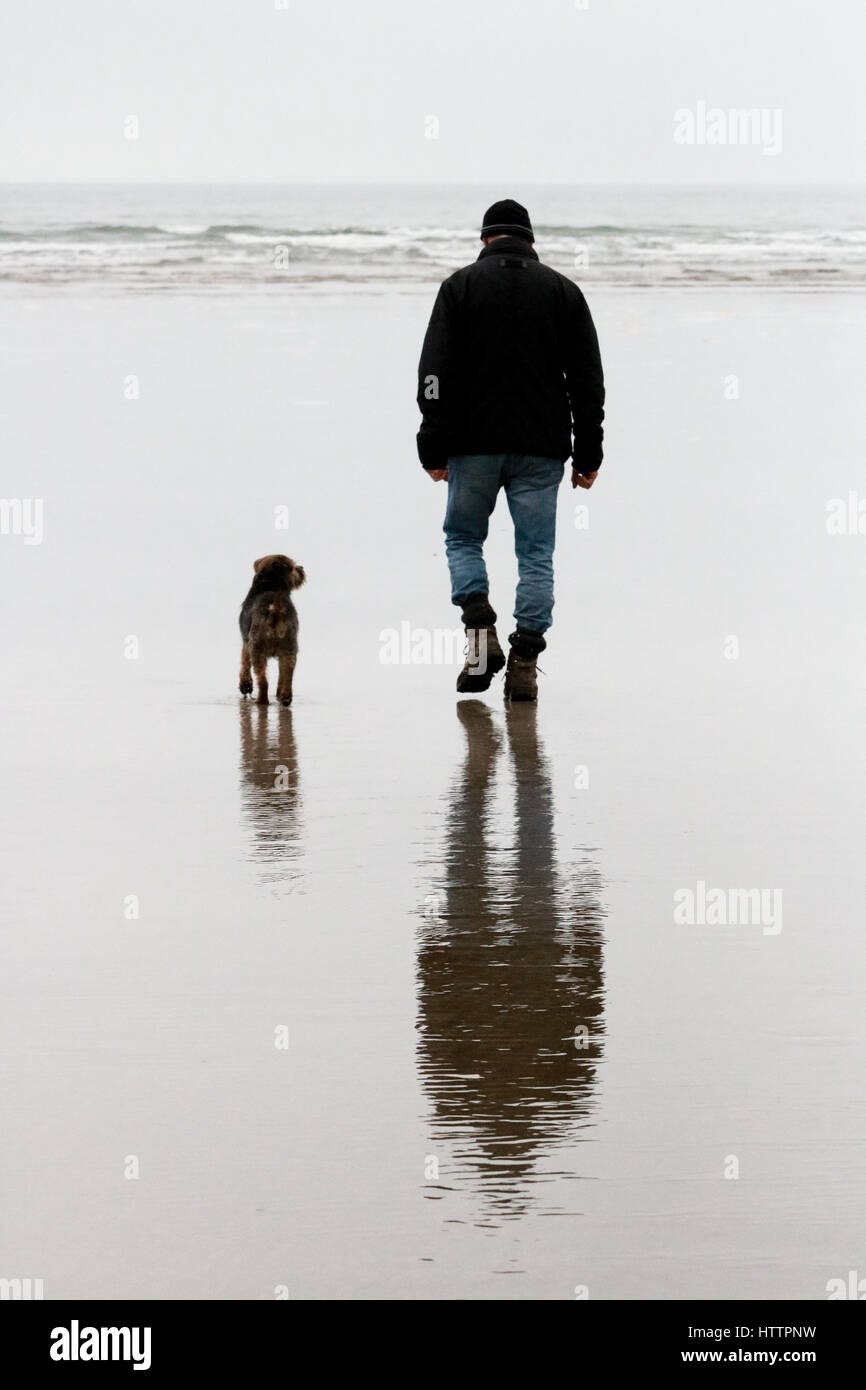 Man and his old Border Terrier dog walking along the beach in North Wales - Stock Image