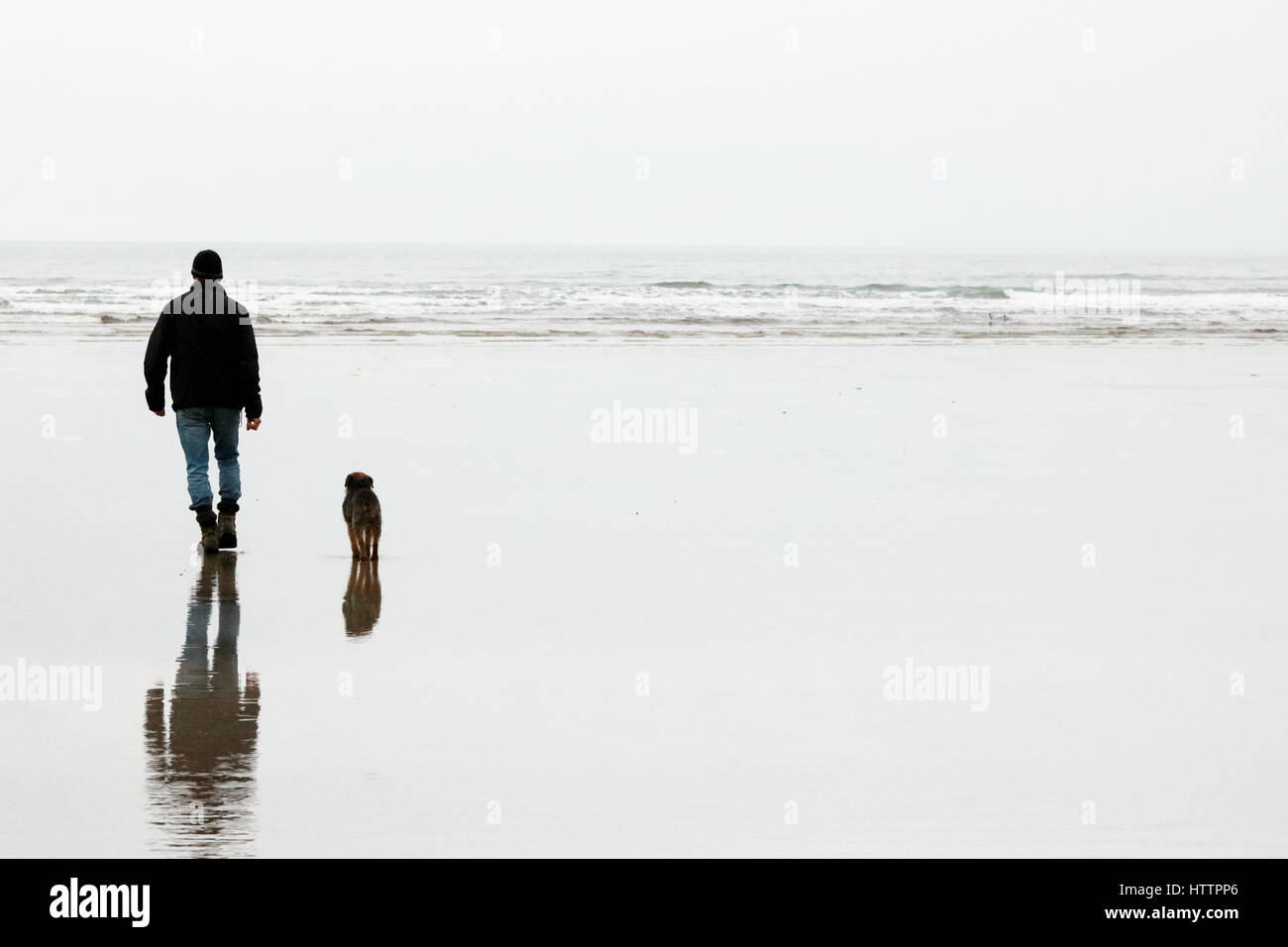Man and his old Border Terrier dog walking along the beach in North Wales Stock Photo