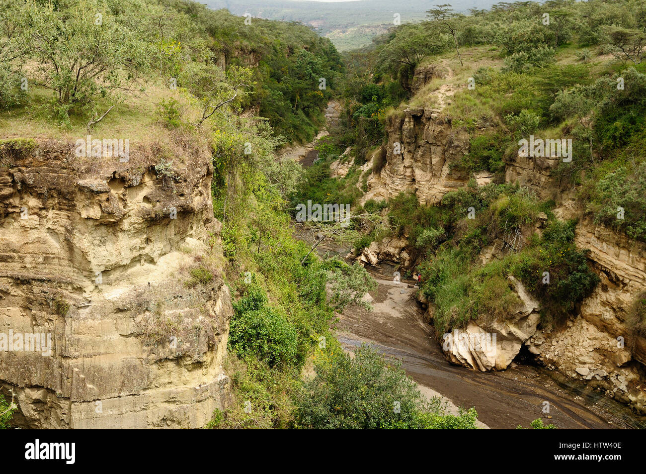 Water-gouged gorges  in the Hells Gate National Park in Kenya Stock Photo
