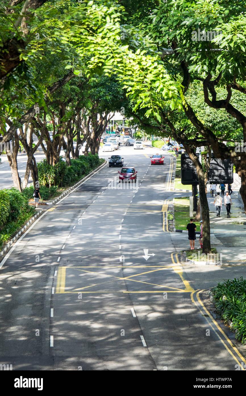 Tree lined dual carriageway Beach Road Singapore. - Stock Image