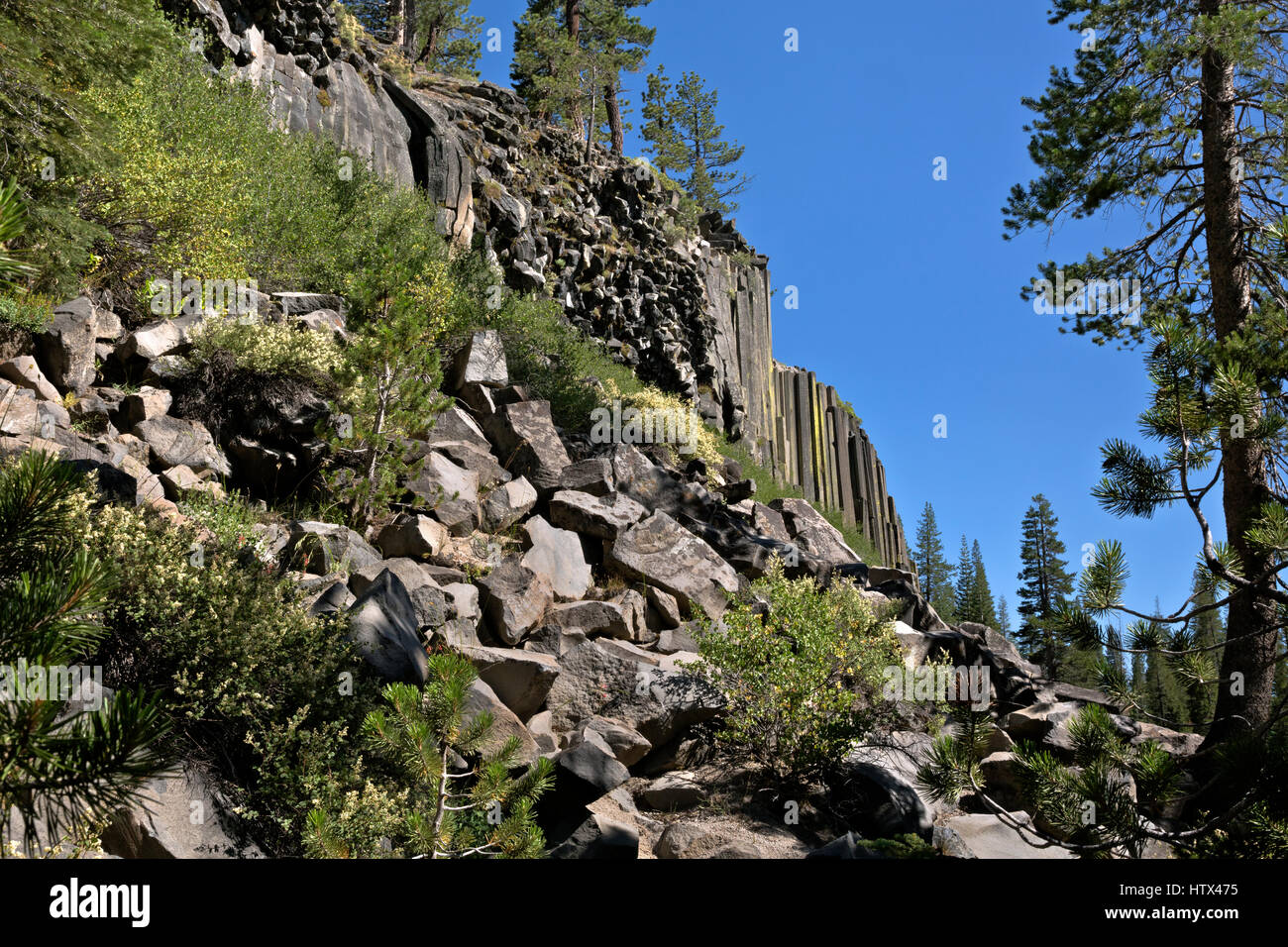 CA03040-00...CALIFORNIA - Wall of columnar basalt at Devils Postpile National Monument. - Stock Image