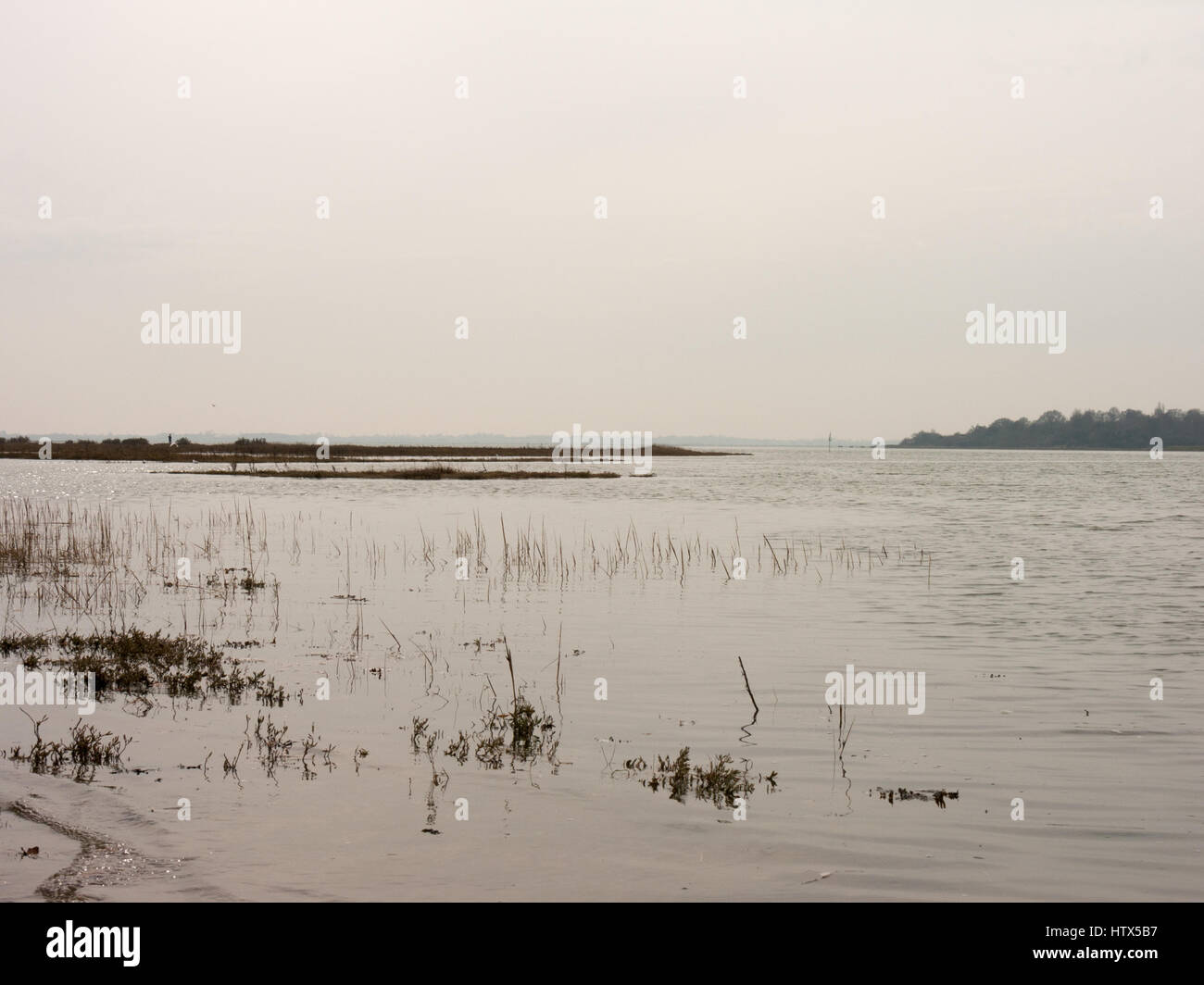 The lovely, crips waters of the Colne on a cold day. - Stock Image