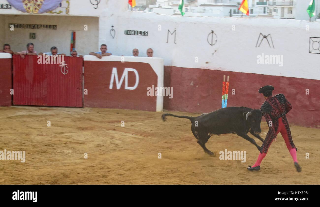 Bullfight In Mijas Spain Stock Photos & Bullfight In Mijas