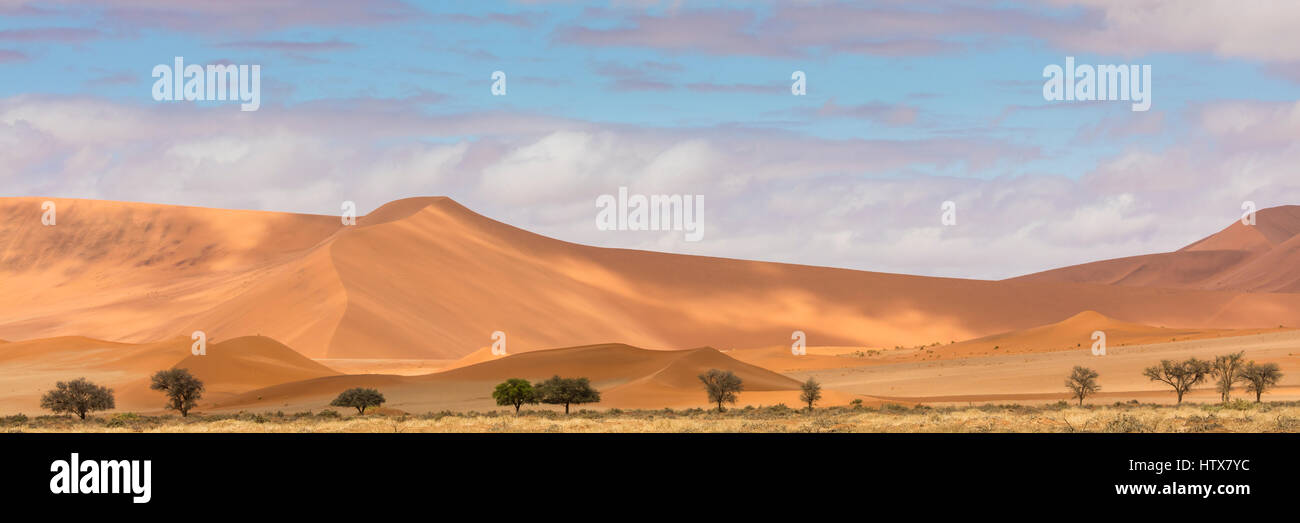 A panoramic view of dunes in the Namib-Naukluft National Park. - Stock Image