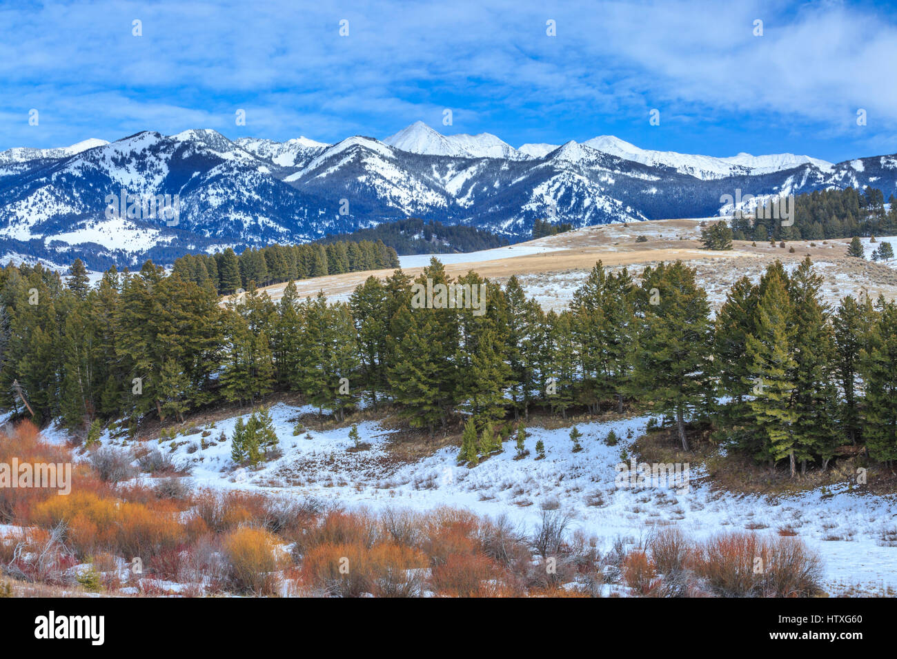 crazy mountains above foothills and riparian habitat in winter near wilsall, montana - Stock Image