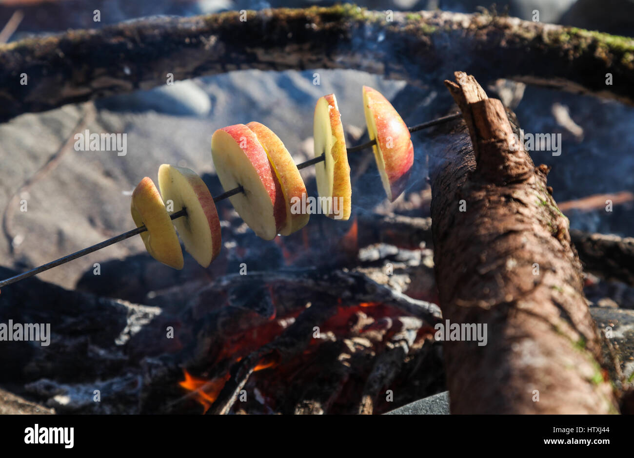 Roasting Apples over a beach fire - Stock Image