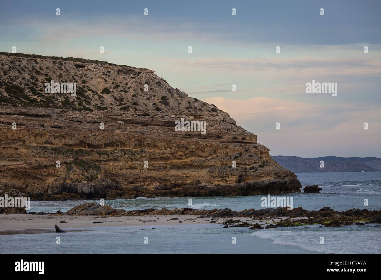 Seal Bay - Kangaroo Island, South Australia - Stock Image
