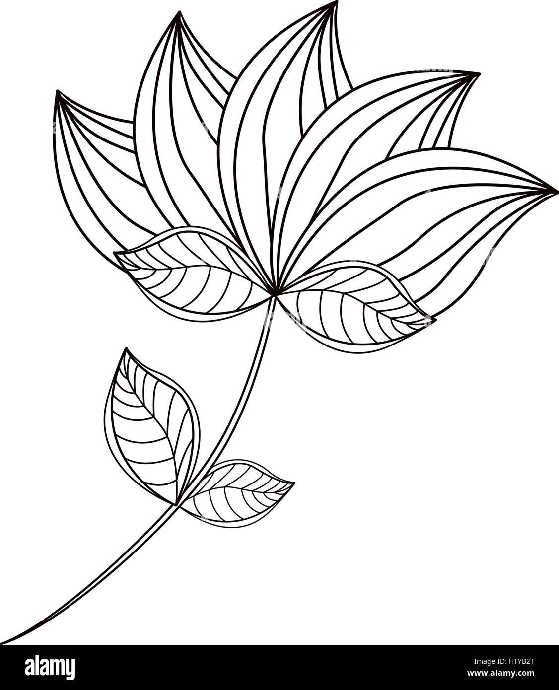 Lotus Flower Logo Creative Abstract Stock Photos Lotus Flower Logo