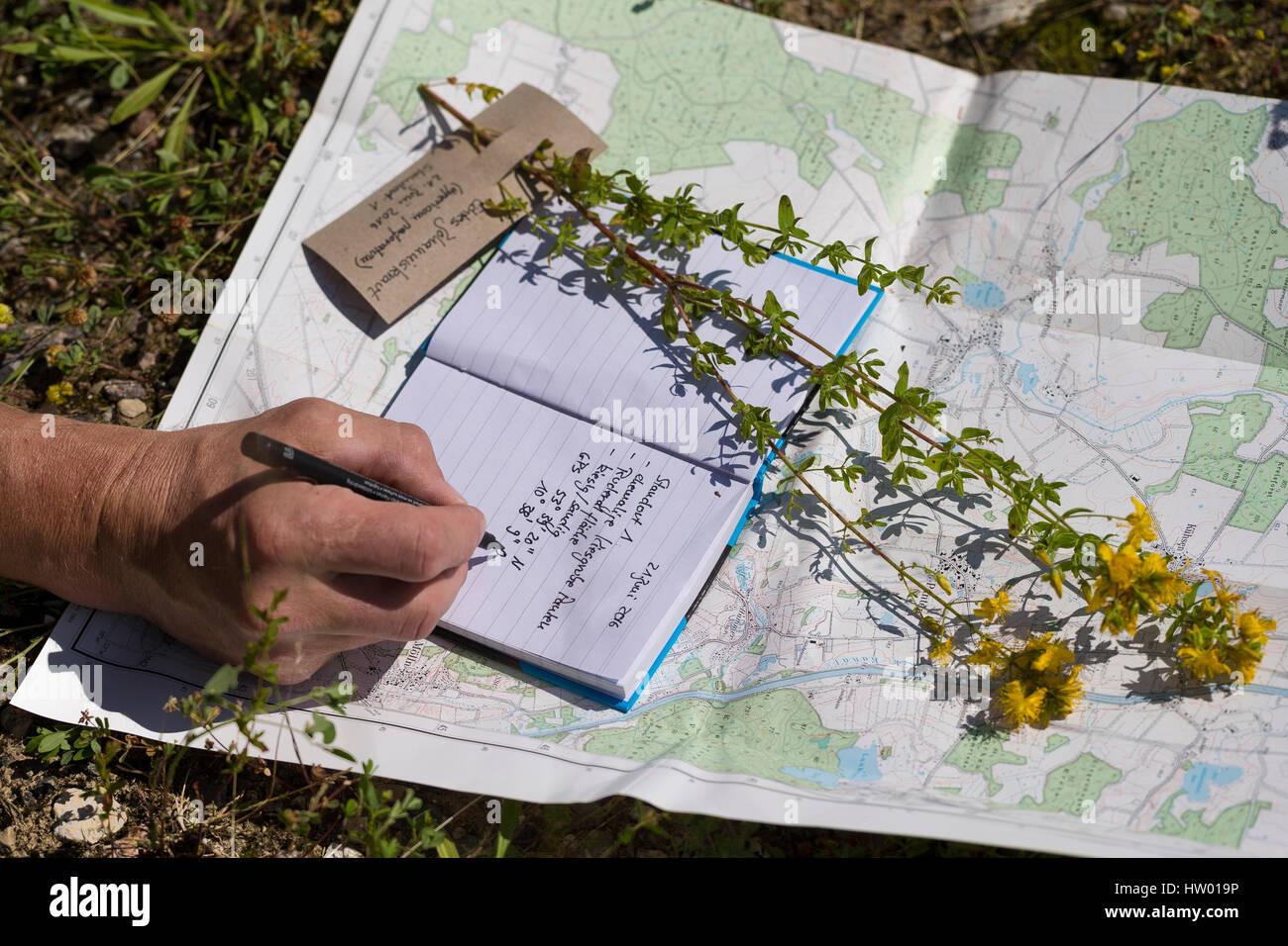 Daten werden notiert, Sammeldaten, Standort, Topografische Karte, Notizblock, Pflanzen sammeln, Pflanzen bestimmen. - Stock Image