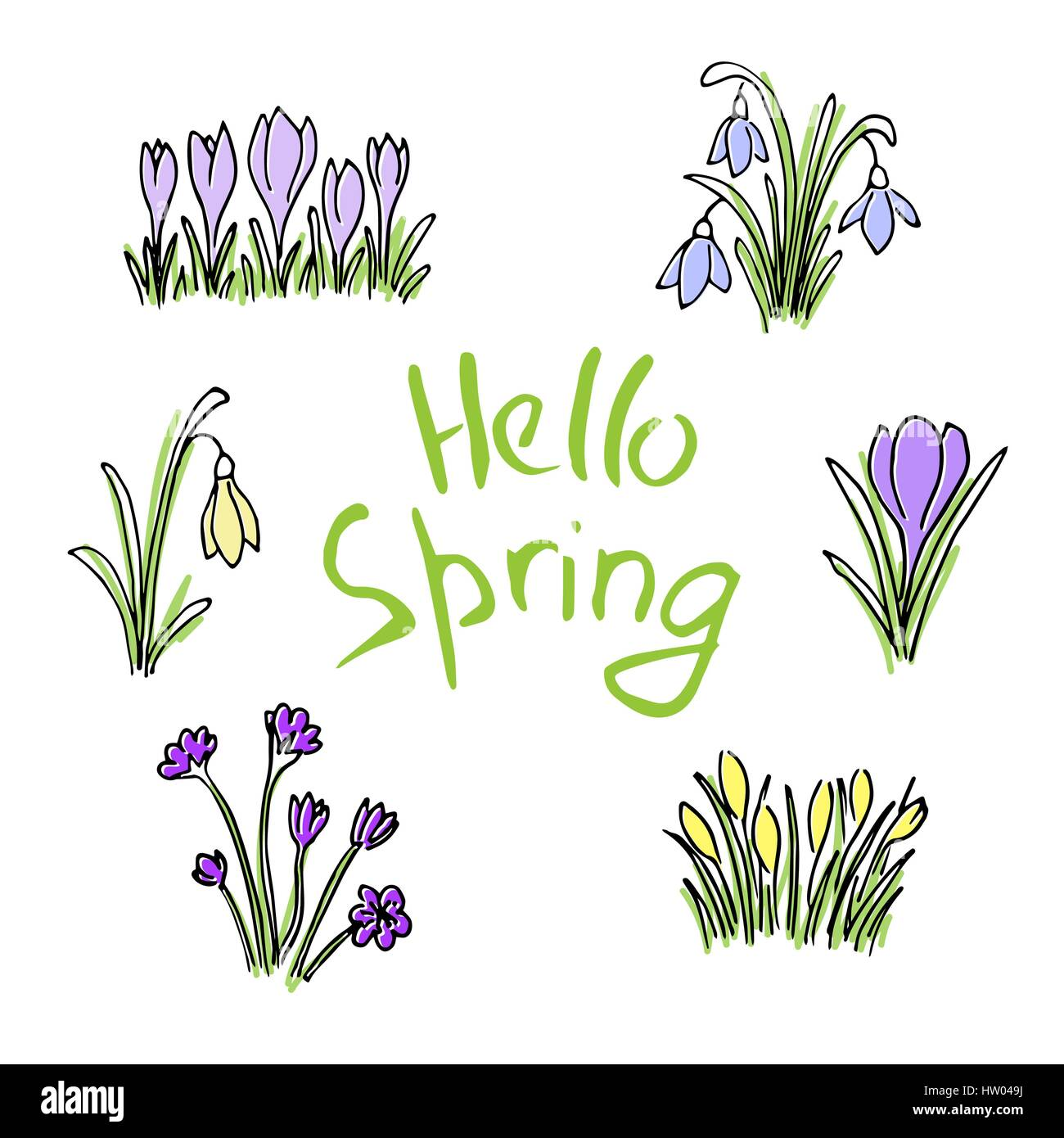 Hello Spring colored sketch set. First flowers and Lettering - Stock Vector