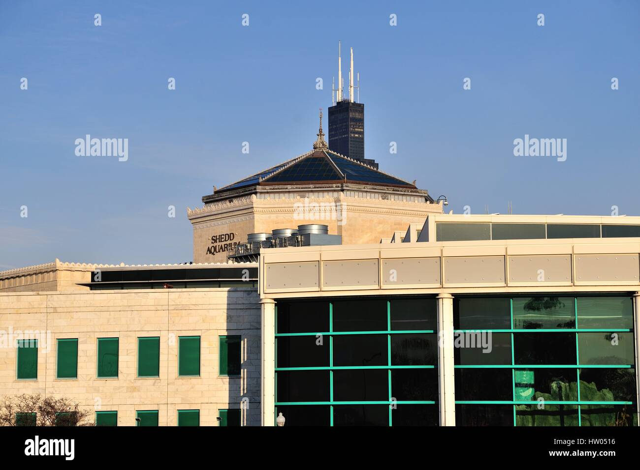 Chicago's Willis Tower (formerly Sears Tower) almost appears to be rising from the roof of the Shedd Aquarium. - Stock Image
