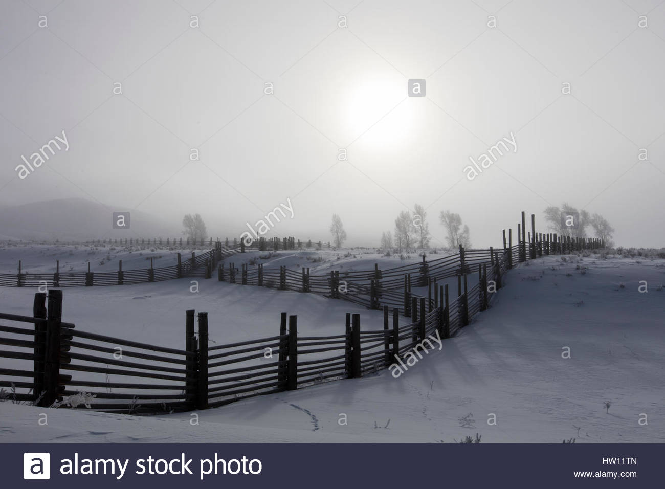 Wooden fences separate snow covered pastureland. - Stock Image