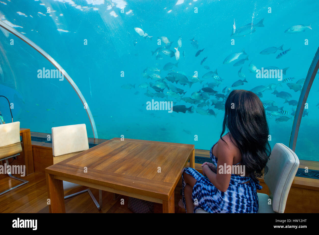 Underwater Hotel Stock Photos Underwater Hotel Stock Images Page