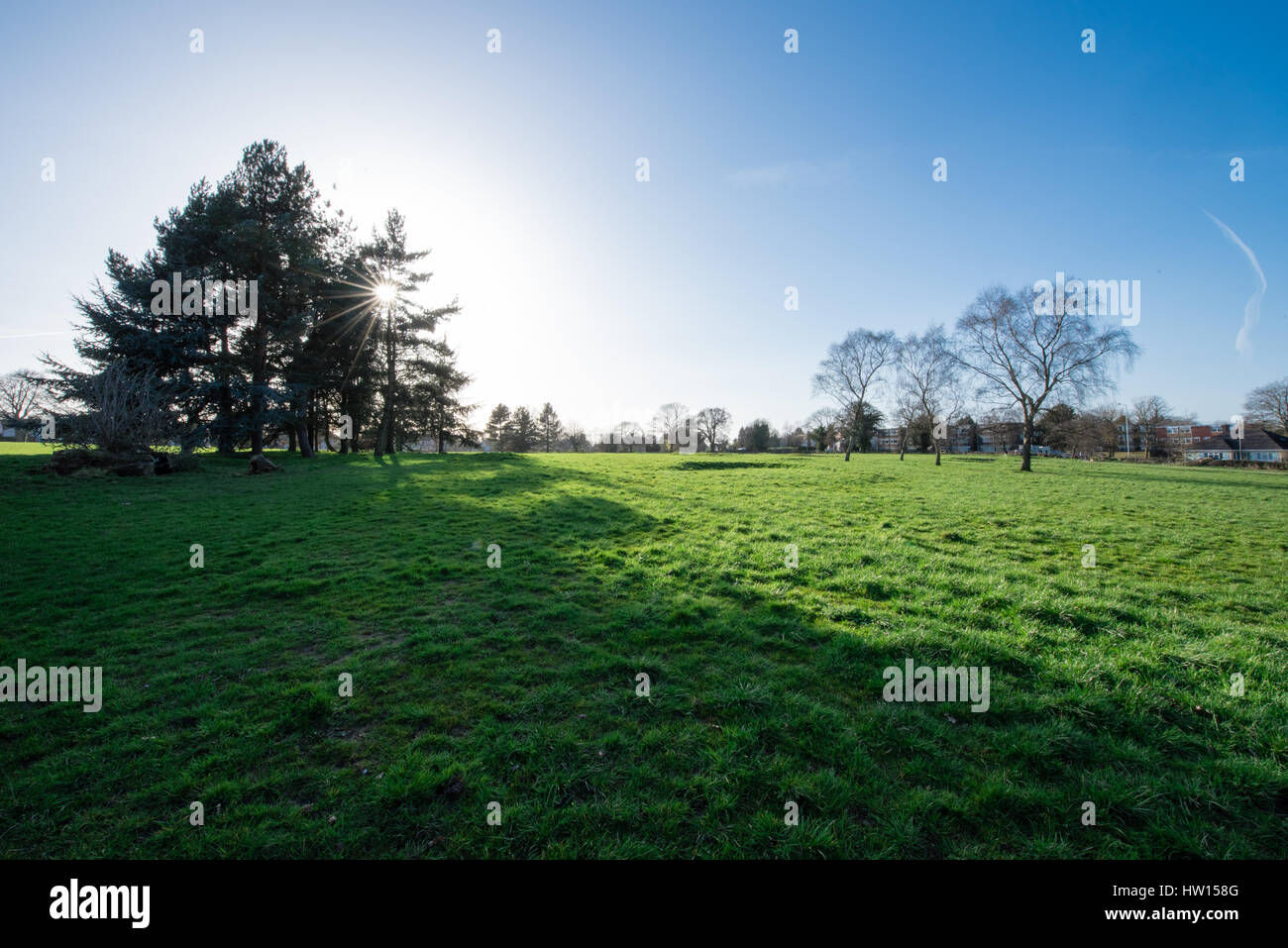 Spring afternoon sunshine and blue skies over urban public parkland at Bantock House near Wolverhampton - Stock Image