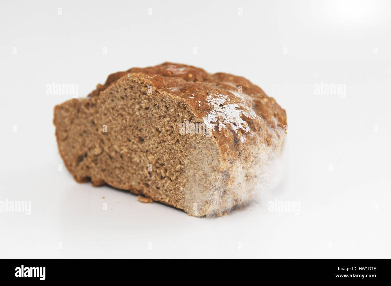 Bread with mould, Brot mit Schimmel - Stock Image