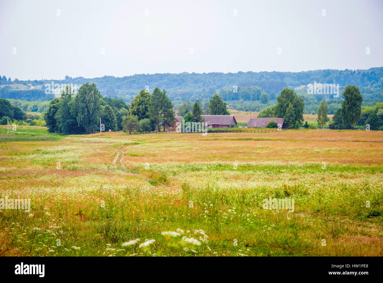 View on bright landscape with country houses in Lithuanian country - Stock Image