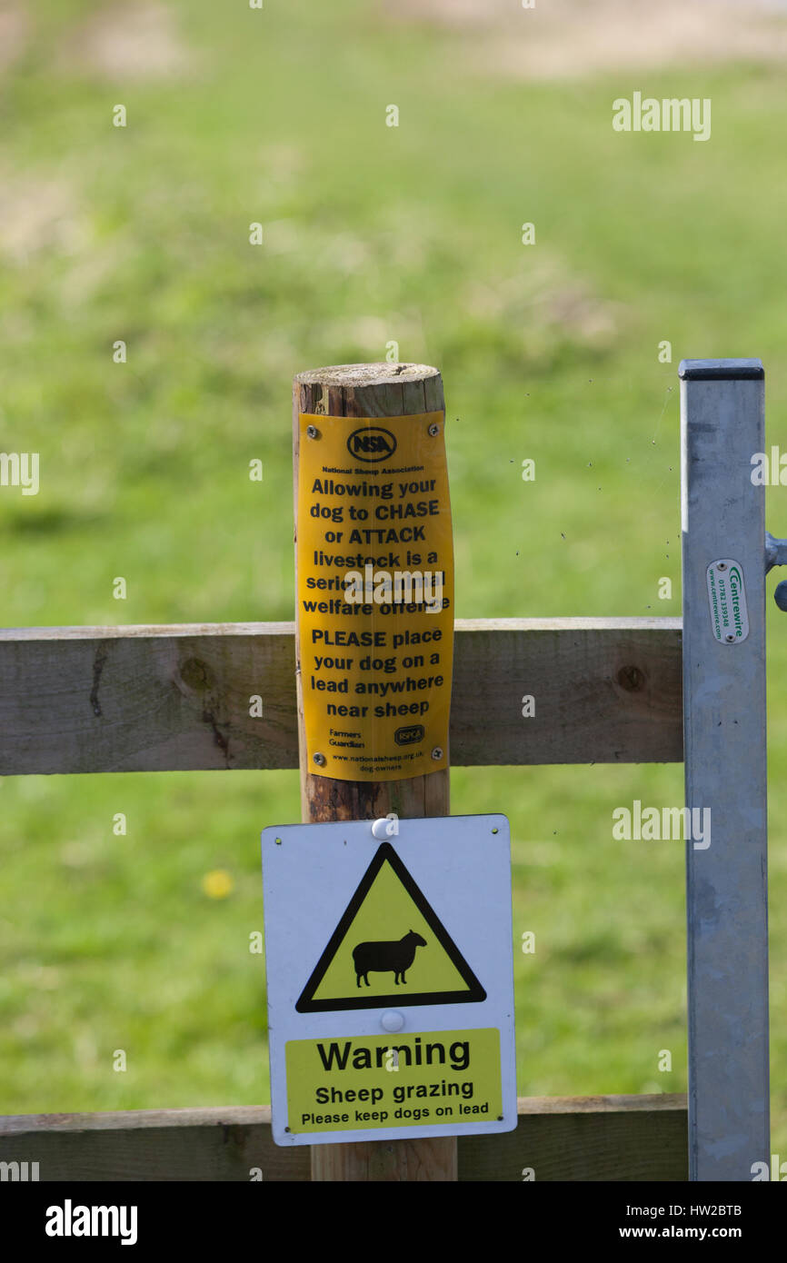 Warning signs for dog owners near Farmland - Stock Image