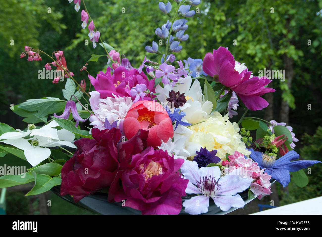 Bouquets of May Flowers, Peonies, Baptisia, Clematis, Bleeding Heart ...