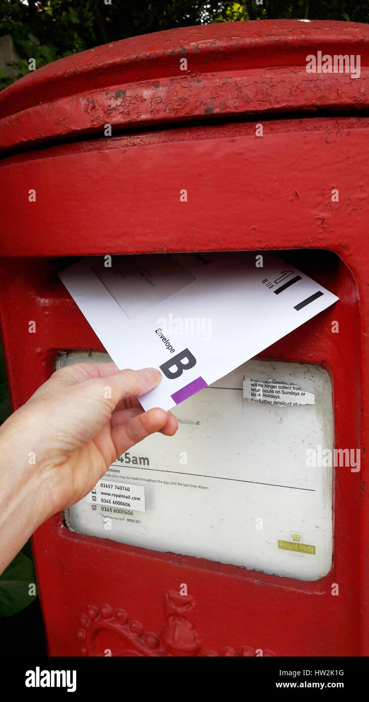 Posting a completed EU referendum voting card into the local postbox. - Stock Image