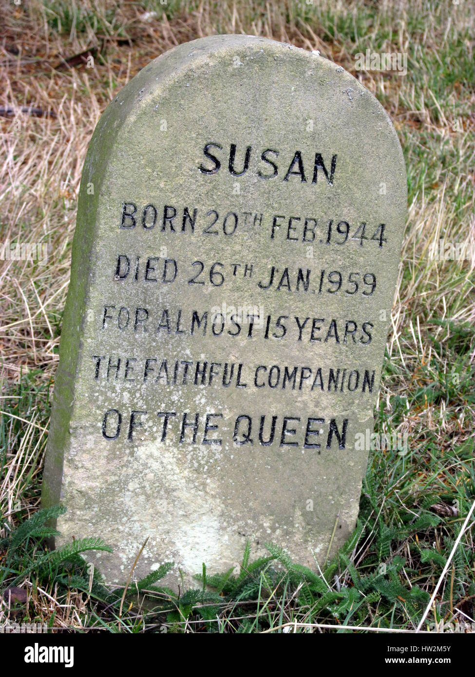 The Graves of the Queen's Corgi's and other royal family pets at Sandringham House, Norfolk. - Stock Image