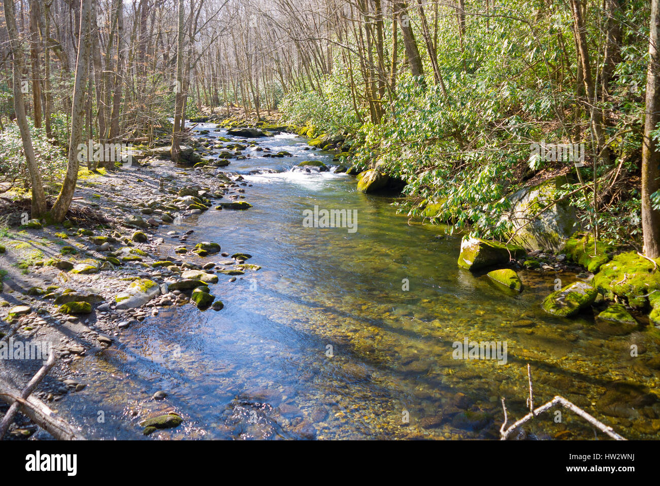View from Little River Trail in the Great Smoky Mountains National Park - Stock Image
