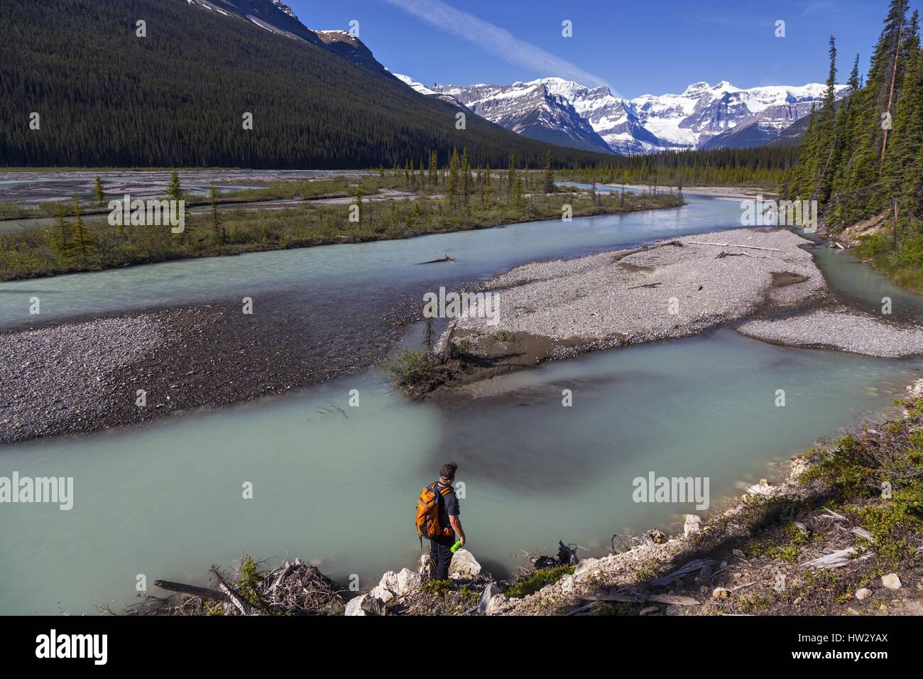 Hiker enjoying views of braided channels of Alexandra River in the heart of Banff National Park in Canadian Rocky - Stock Image