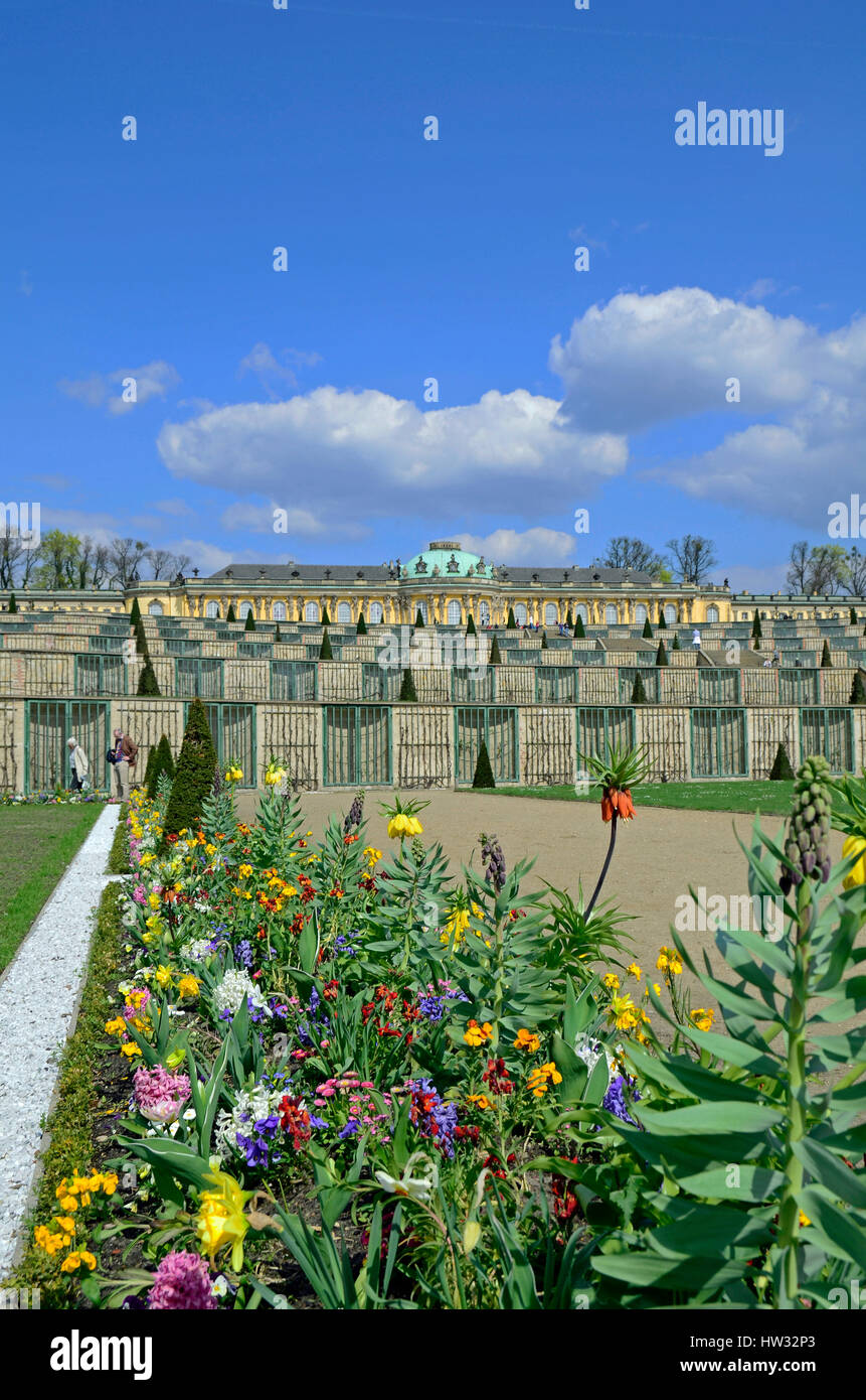 Sanssouci Palace in Potsdam, Germany, Europe Stock Photo