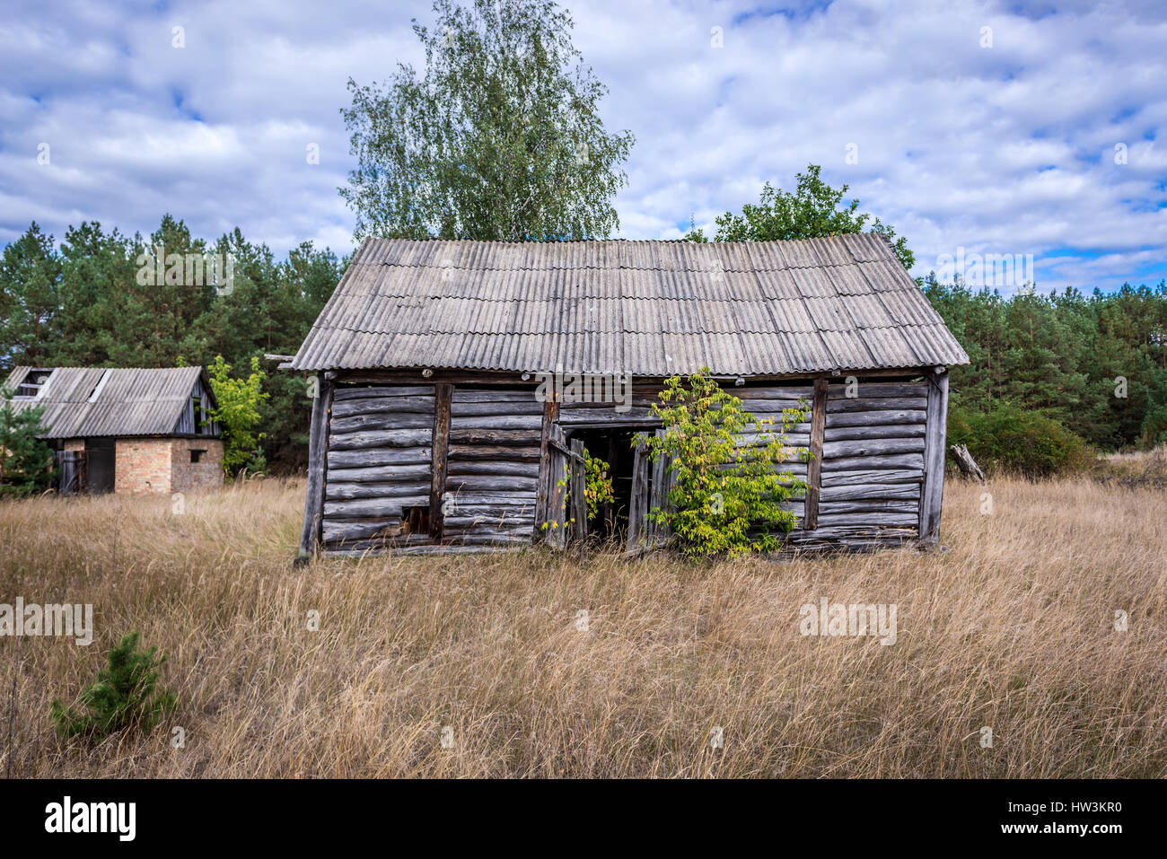 Old wooden barn in Mashevo abandoned village of Chernobyl Nuclear Power Plant Zone of Alienation area around nuclear - Stock Image
