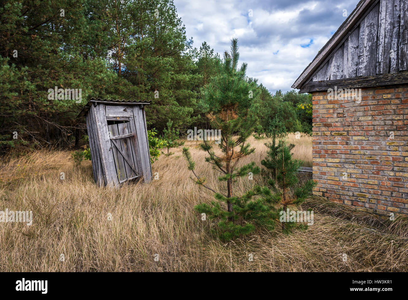 Old wooden privy in Mashevo abandoned village of Chernobyl Nuclear Power Plant Zone of Alienation area around nuclear - Stock Image