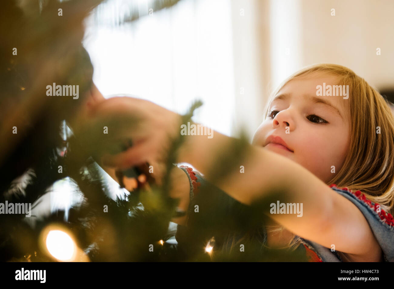 Caucasian girl hanging lights on Christmas tree Stock Photo
