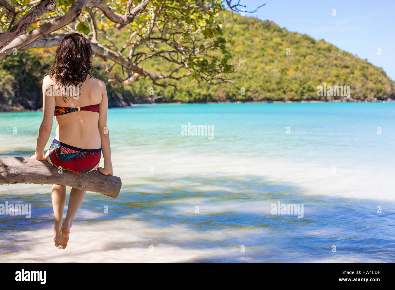 Caucasian woman sitting on branch over tropical beach Stock Photo