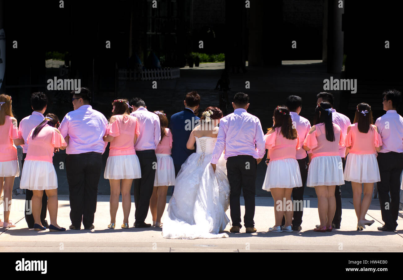 Bride and groom plus Large group of wedding guests having a photo shoot during a sunny day. - Stock Image