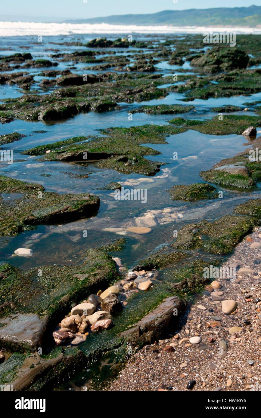 Rocks and tidepools at the Beach at Jalama Beach County Park, near Lompoc, California, USA. - Stock Image