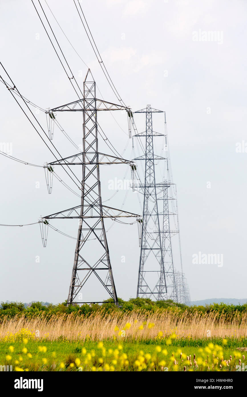 Pylons carrying electricity from Hinkley Point nuclear power station in Somerset, UK. - Stock Image