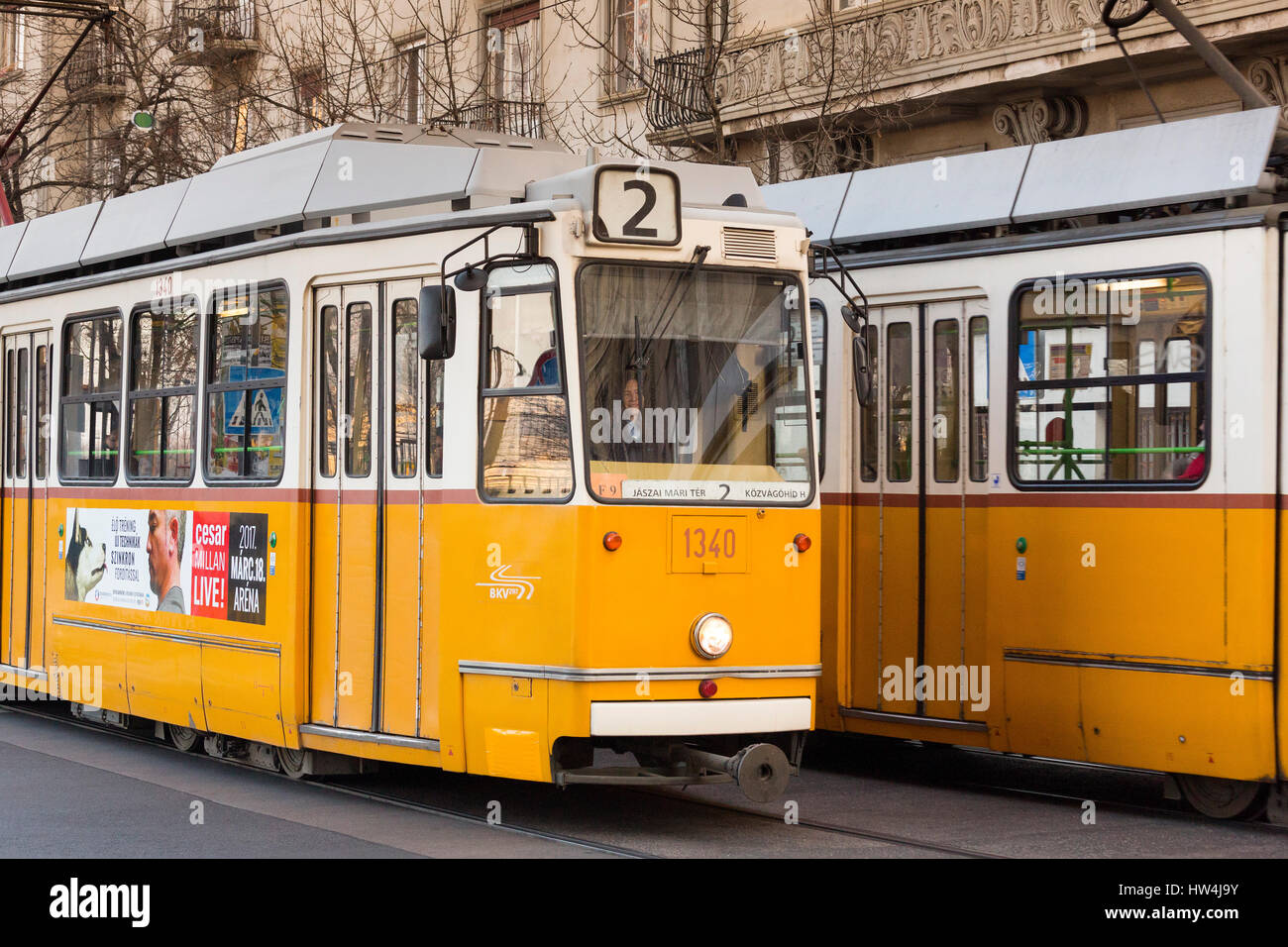 Tram. Street life. Budapest Hungary, Southeast Europe Stock Photo