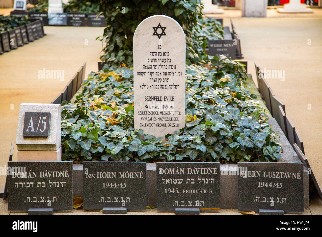 Gravestones in the cemetery. Great Jewish synagogue. Pest. Budapest Hungary, Southeast Europe - Stock Image