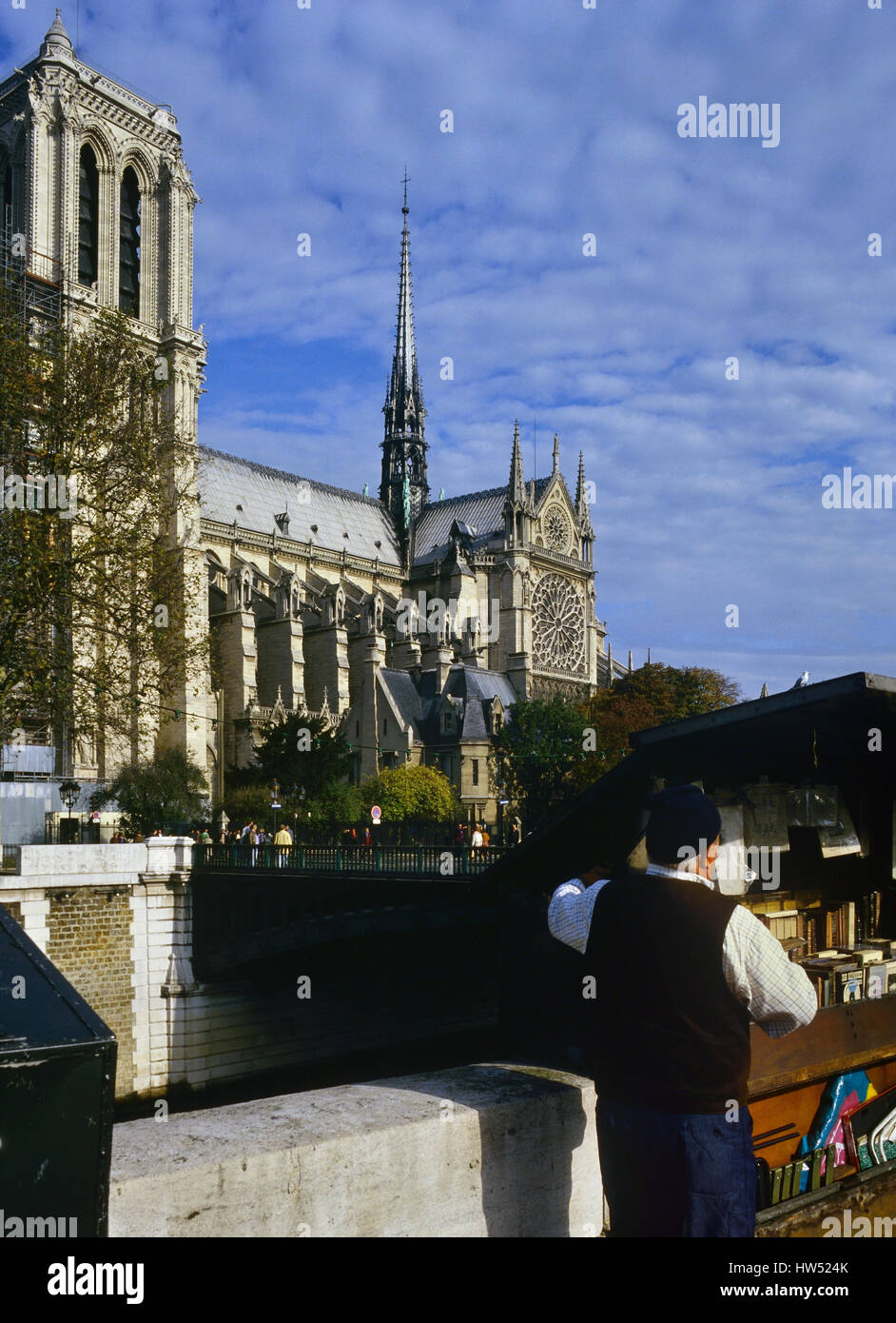Book seller stalls on the Left Bank with view across the Seine River to Notre Dame Cathedral, Paris, France - Stock Image