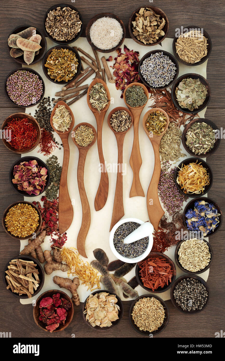 Natural alternative medicine selection of dired herbs and flowers in wooden spoons and bowls with mortar and pestle - Stock Image