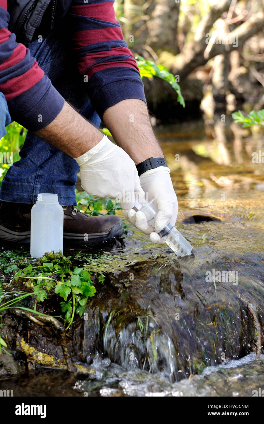 Biologist that collects samples in a water course for the analysis of its pollution and for the study of its characteristics. - Stock Image