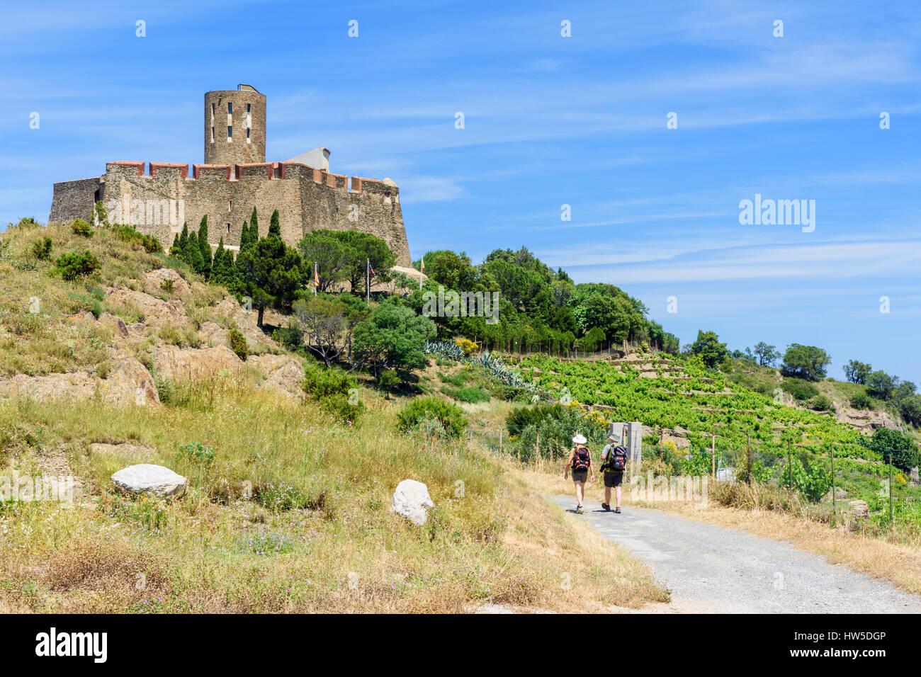 Walkers on the way to the landmark Fort Saint Elme, Collioure, Côte Vermeille, France - Stock Image