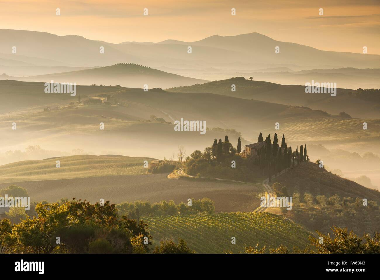 Italy, Tuscany, Siena district, Orcia Valley, listed as World Heritage by UNESCO, Podere Belvedere near San Quirico Stock Photo