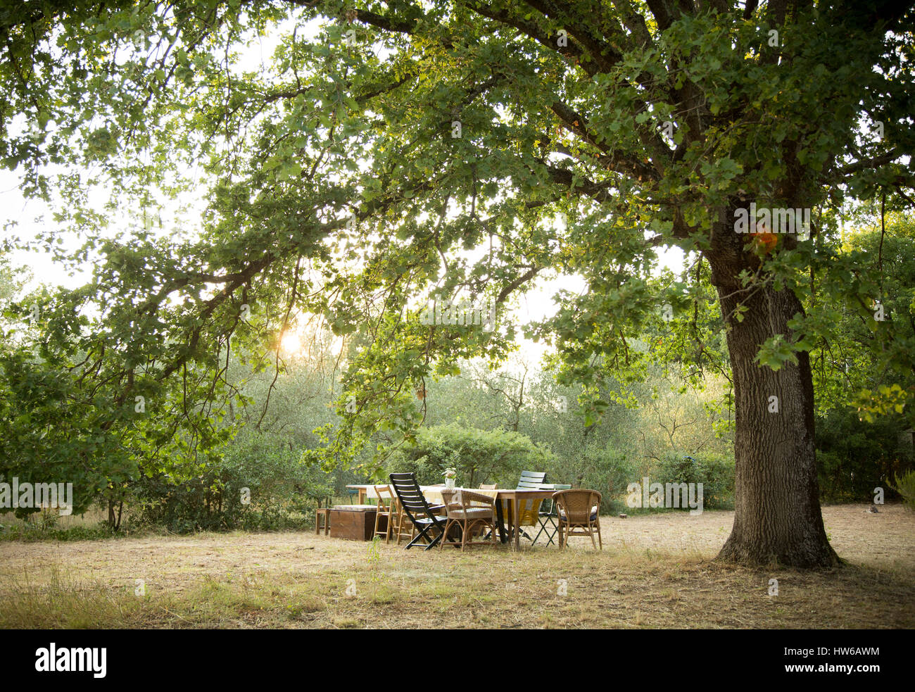 Outdoor dining in Tuscany, Italy. - Stock Image