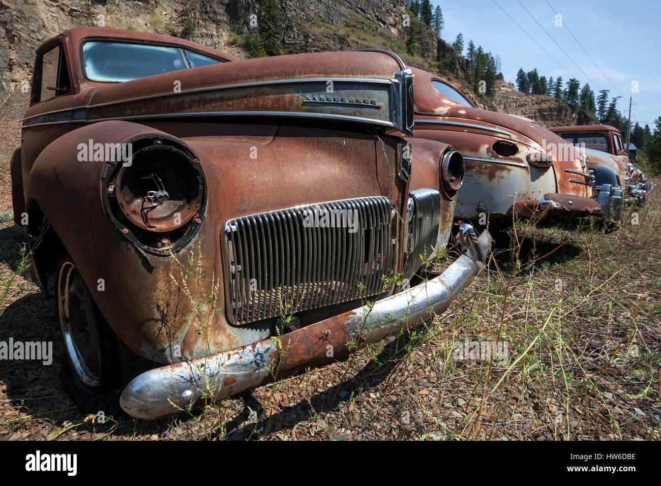 Oldtimer, Studebaker Champion, scrap cars, near Spokane, Washington, USA - Stock Image