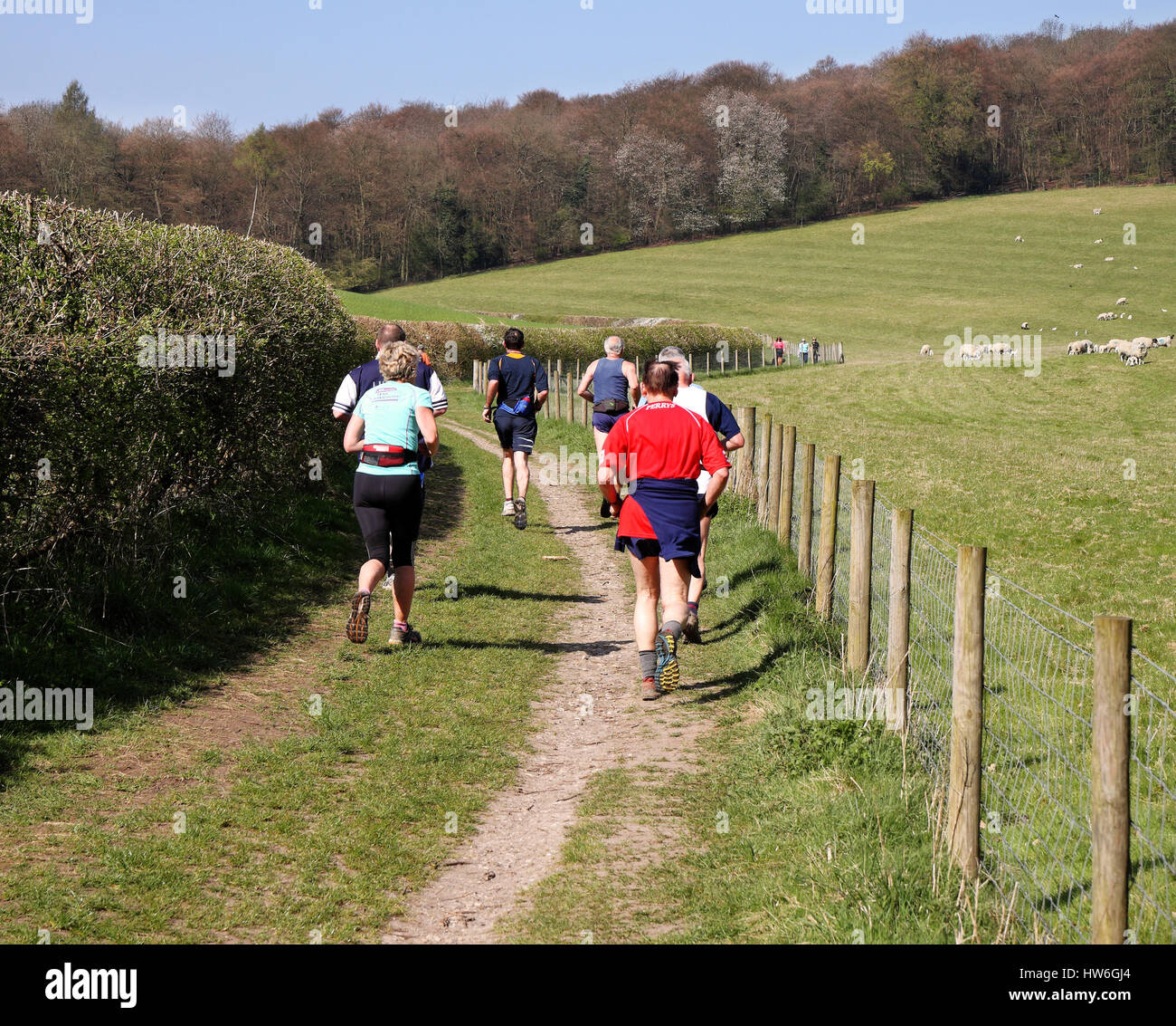 Male and female Joggers and ramblers on a rural track in the Chiltern Hills - Stock Image