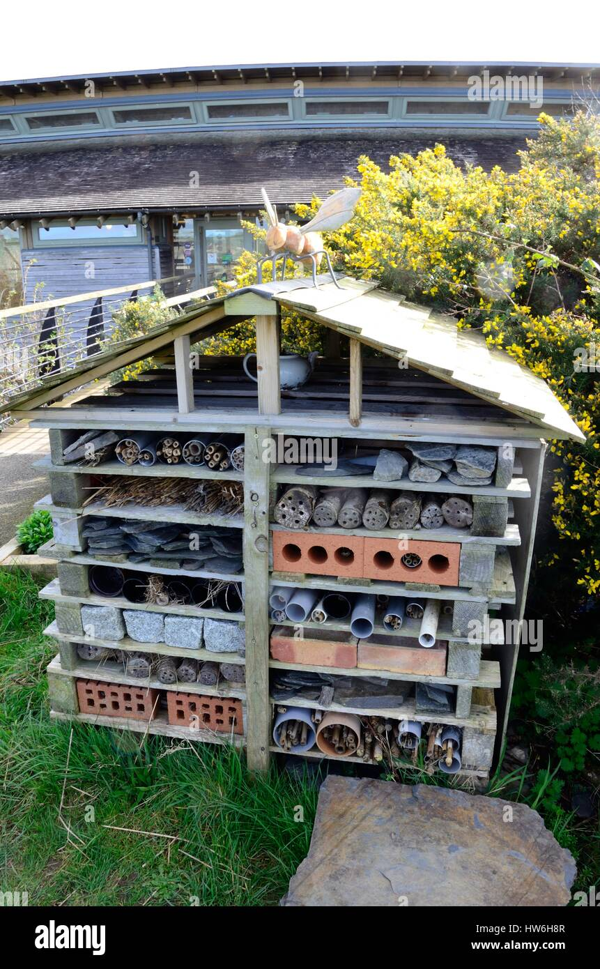 Insect bug box house shelter for insects bugs  and invertibrates - Stock Image