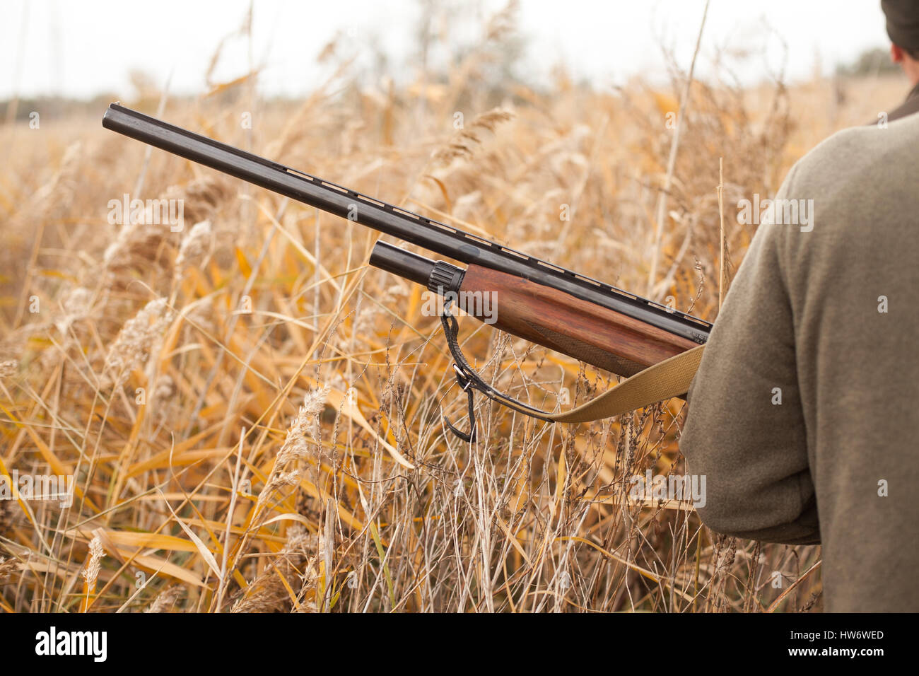 the hunter holds the gun. the man on hunting. hunting for birds. - Stock Image
