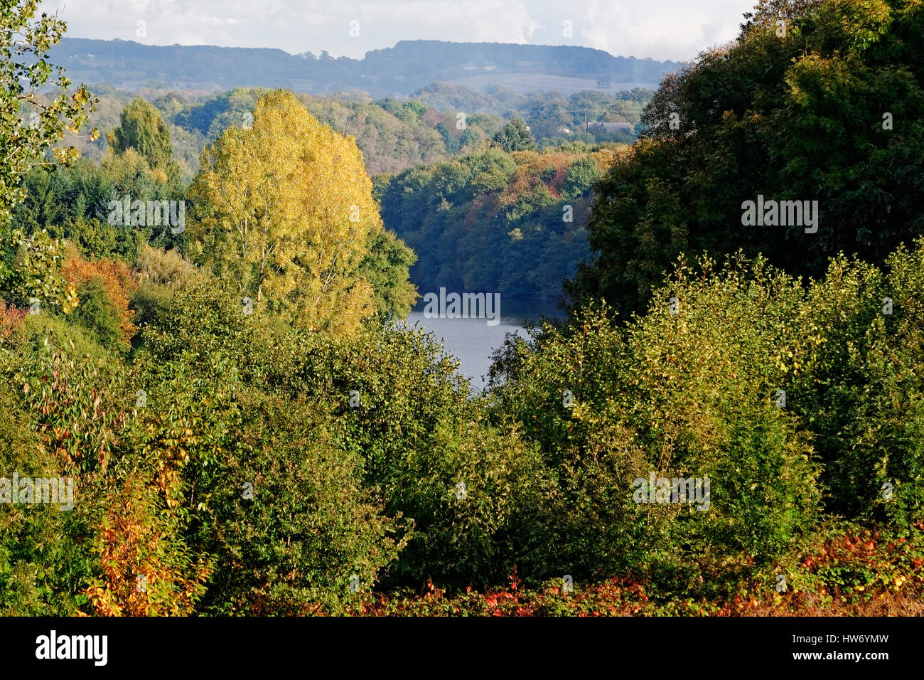 Valley of the river Mayenne in the fall, shores lined with trees (Oaks, conifers, poplars). Stock Photo