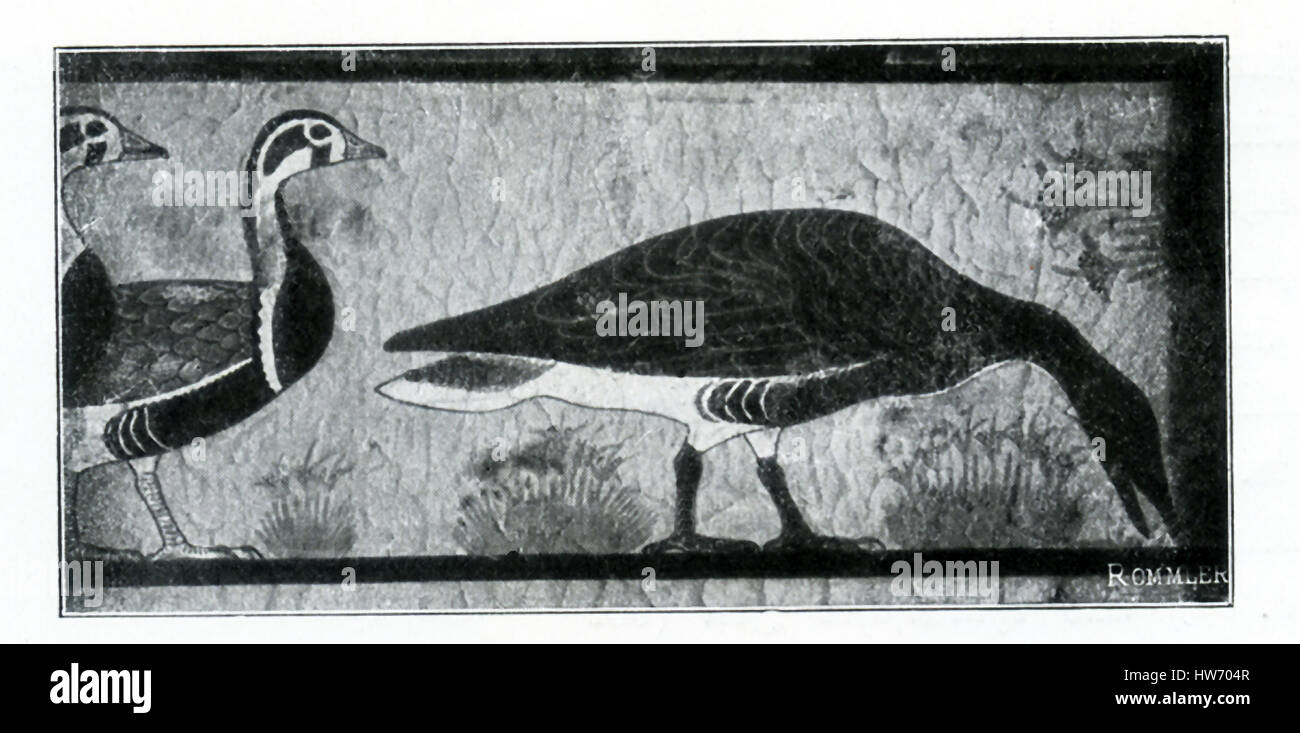 This illustration of a painting on a tomb wall in Meidum shows three geese. The time period is Dynasty 4, the reign - Stock Image